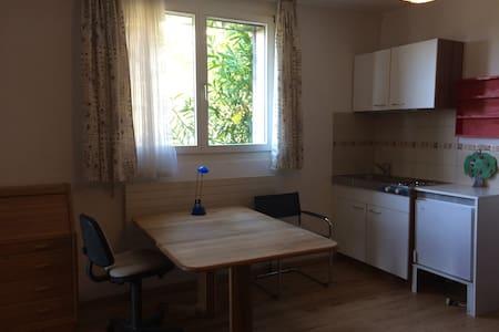 Einzimmer-Studio: kl. Küche, Dusche, sep. Eingang - Gordola