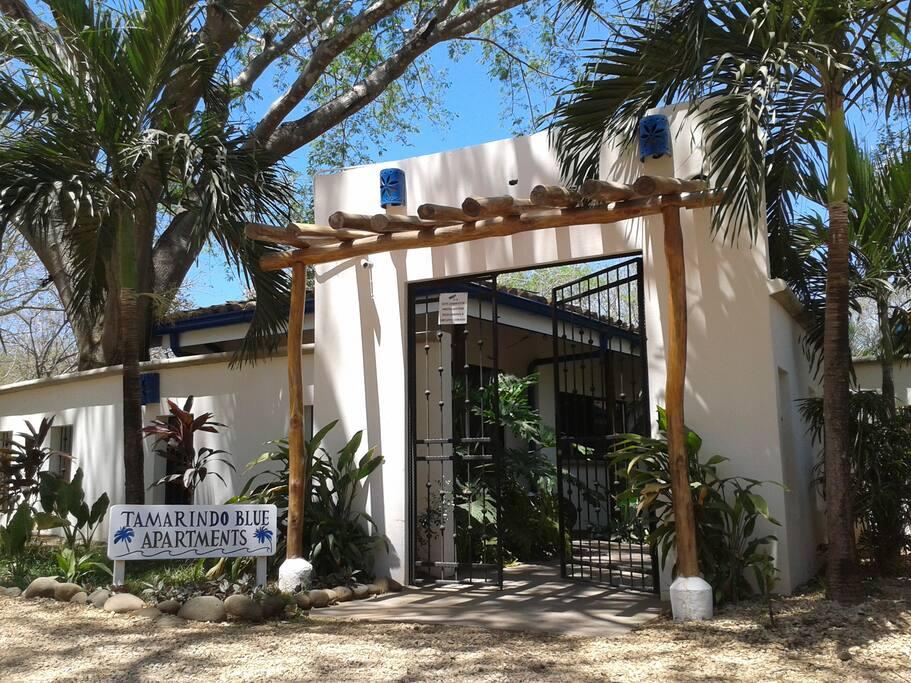 tamarindo blue 3 appartements louer tamarindo guanacaste costa rica. Black Bedroom Furniture Sets. Home Design Ideas