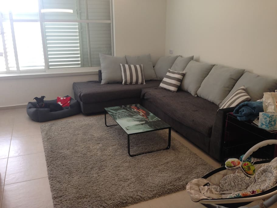 Living room with a brand new sofa