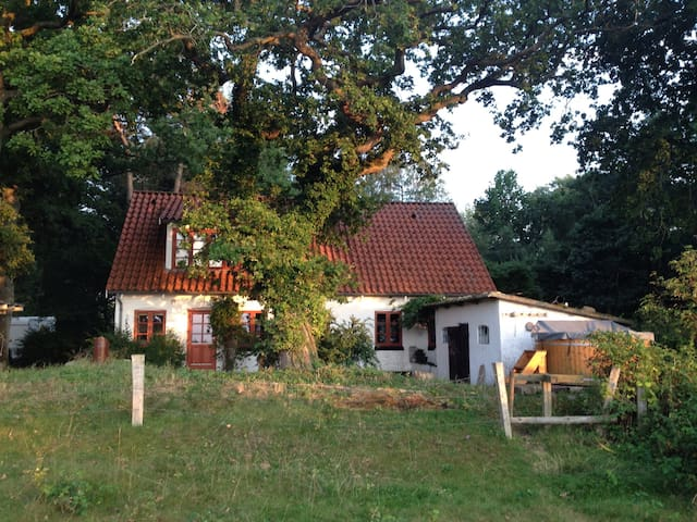 Secluded waterside cottage - Eskebjerg - Casa
