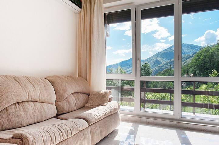 Апартаменты с одной спальней и балконом