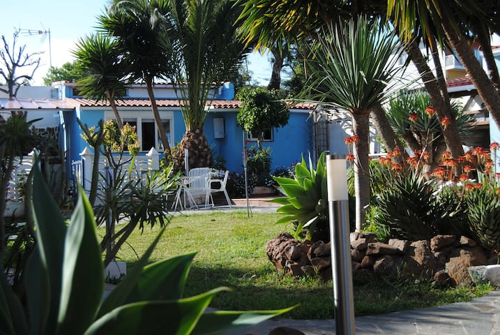 Casa con encanto rodeada de jardín