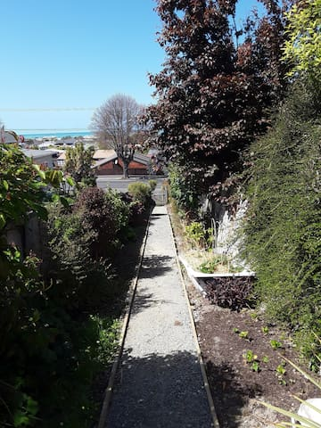 The path that leads to the house.