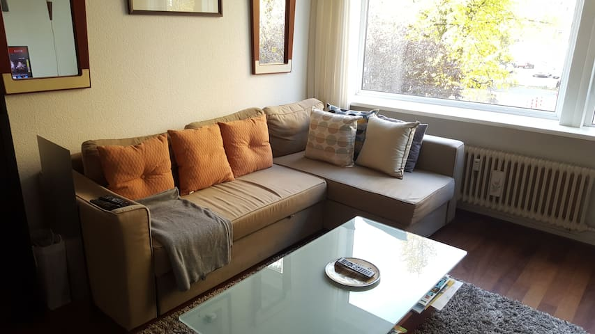 Cozy 2 bedroom apartment - Rijswijk - Wohnung
