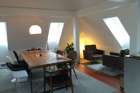 Spacious rooftop appartment - Zuric