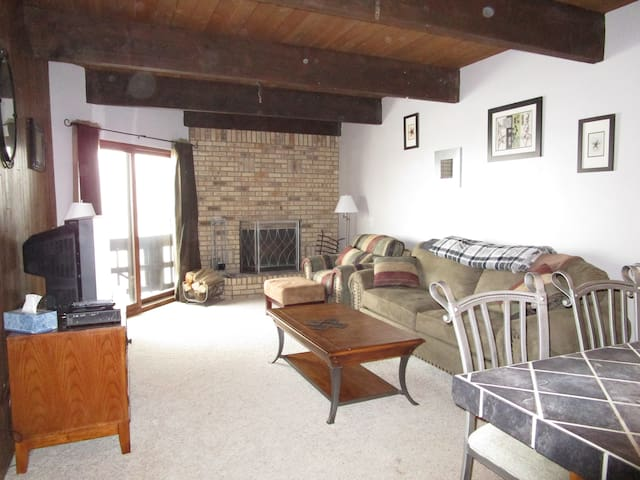 Cozy quiet condo on Mt Crested Butte - ski in/out!
