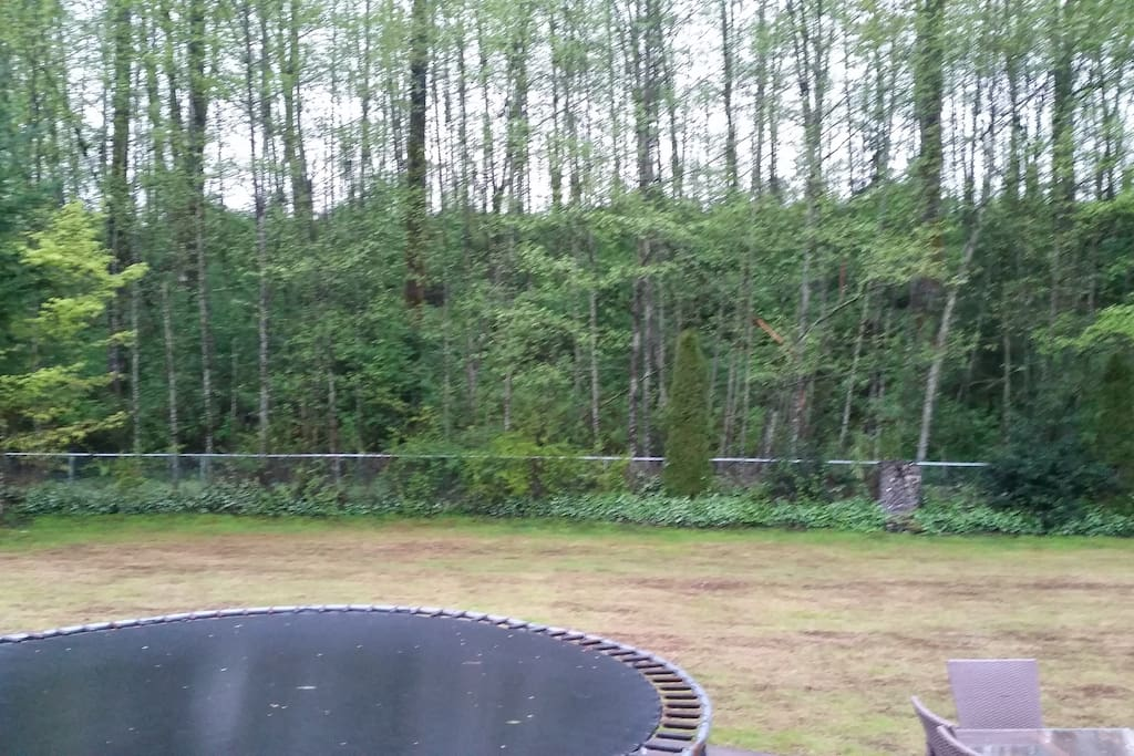 Back yard backs on to 10 acre city park. It is totally private! Trampoline for kids.