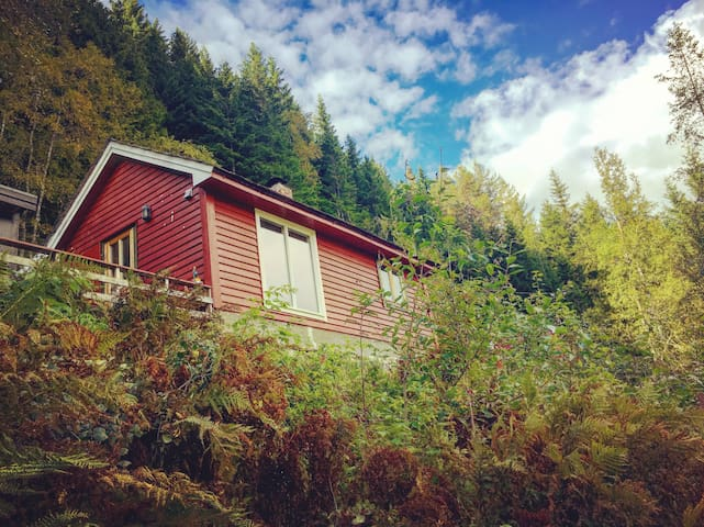 Ekte norsk hyttetun nær Trolltunga og Hardanger
