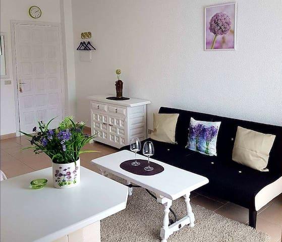 Cozy studio Apartment  Puerto De Santiago