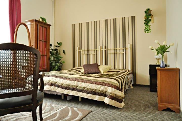 Big room, 2 beds, center of Teplice