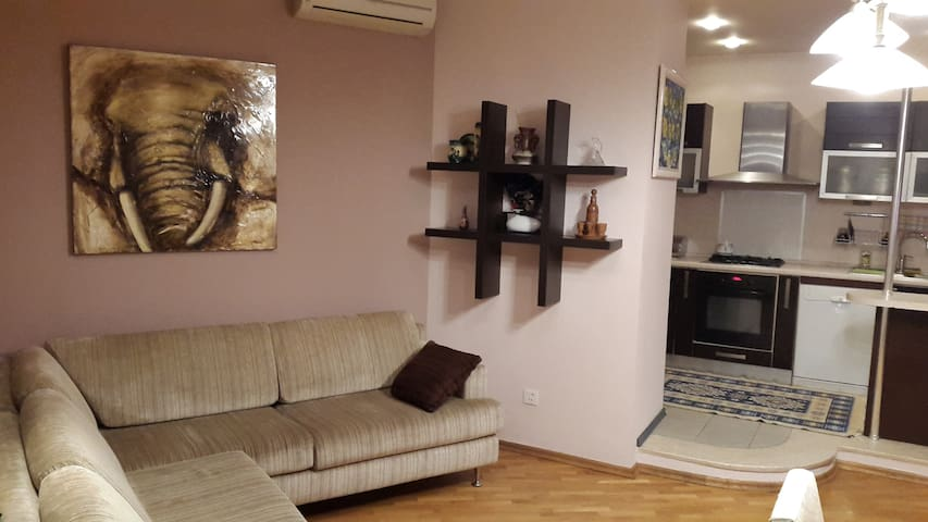 Comfortable flat. 15 minutes walk from city center - Bakü - Daire