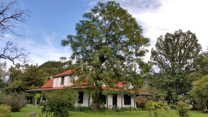 La Molisana, Casa de Campo, Tomas Jofré. Mercedes