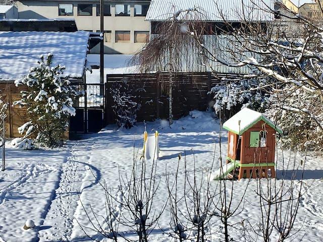 Notre jardin vêtu de son petit manteau blanc
