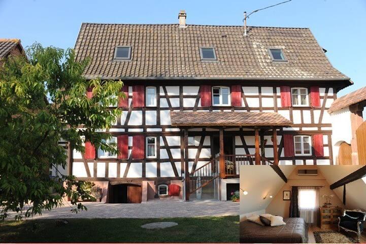 Chambre d'Hôte (Waydelich) à 10 min de Strasbourg - Oberschaeffolsheim - Guesthouse
