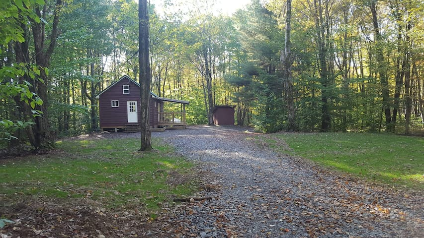20 Acres by Pulaski and the Salmon River Falls!