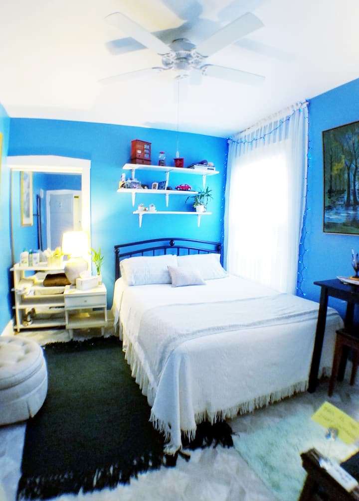 Room in Charming House near O'hare airport