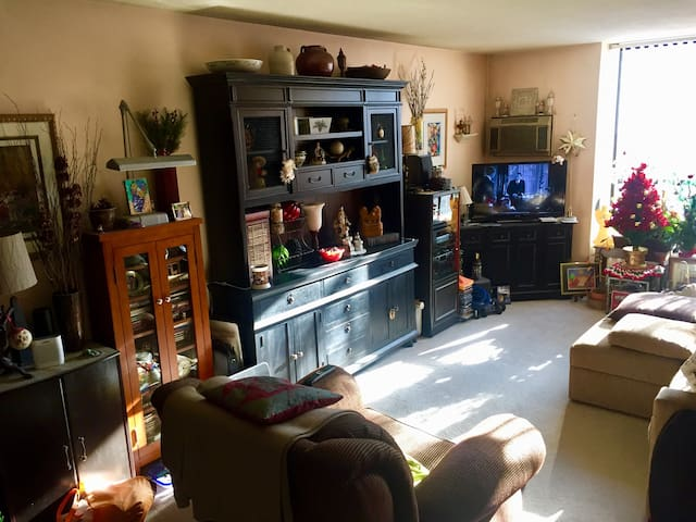 Large cozy living room with great natural light and free cable TV and internet
