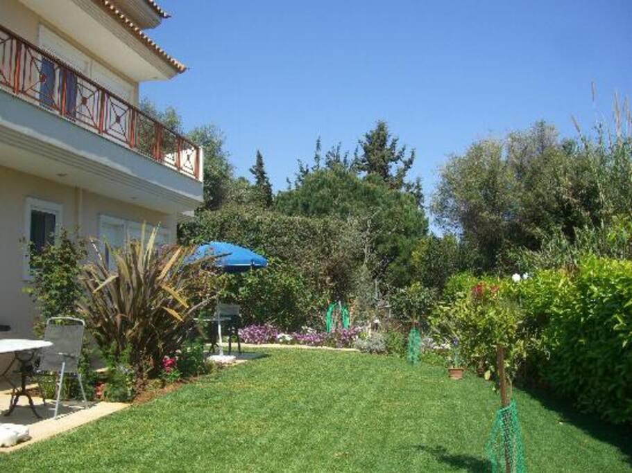Enjoy our garden