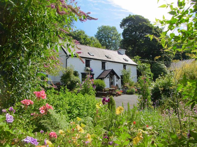 Brynarth Country Guest House - Lledrod - Bed & Breakfast