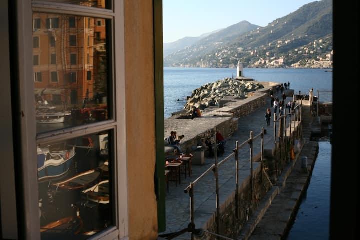 Camogli romance on the old port (010007-LT-0332)