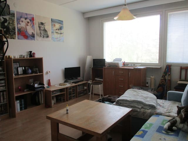 Nice Small Apartment - Lappeenranta - Departamento