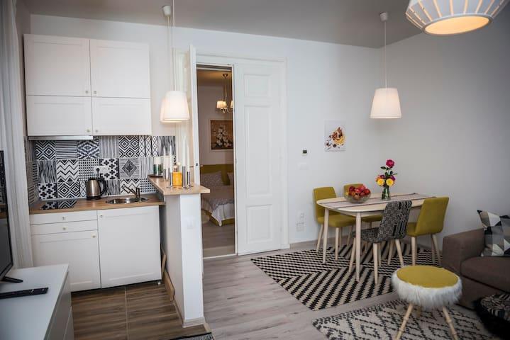 Reghin guest house