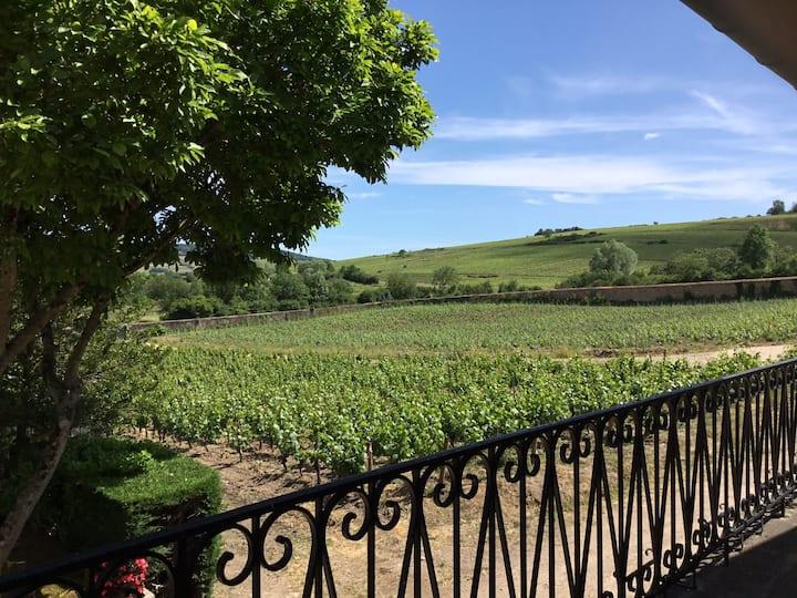 Maison en pierres  dans les vignes. Le clos du may