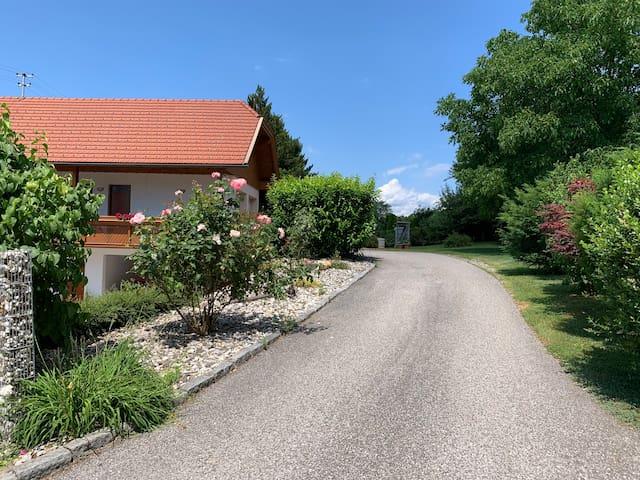 Wohnung/apartment im Paradies Kärntens
