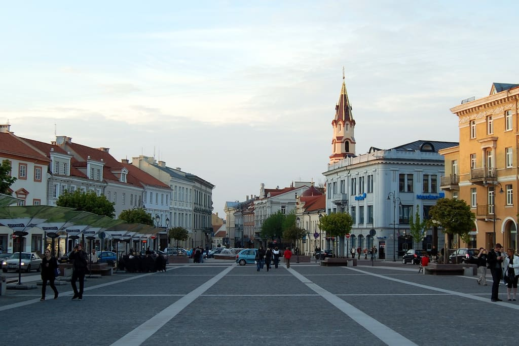A view of Didzioji str. from  Town Hall
