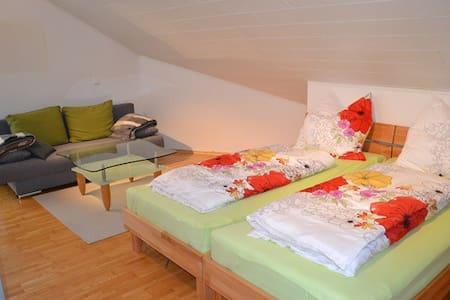 DG Zimmer Nord - Groß-Umstadt - Lägenhet