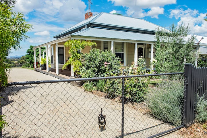 Rutherglen - Indigo Deluxe King Suite - Rutherglen - Bed & Breakfast