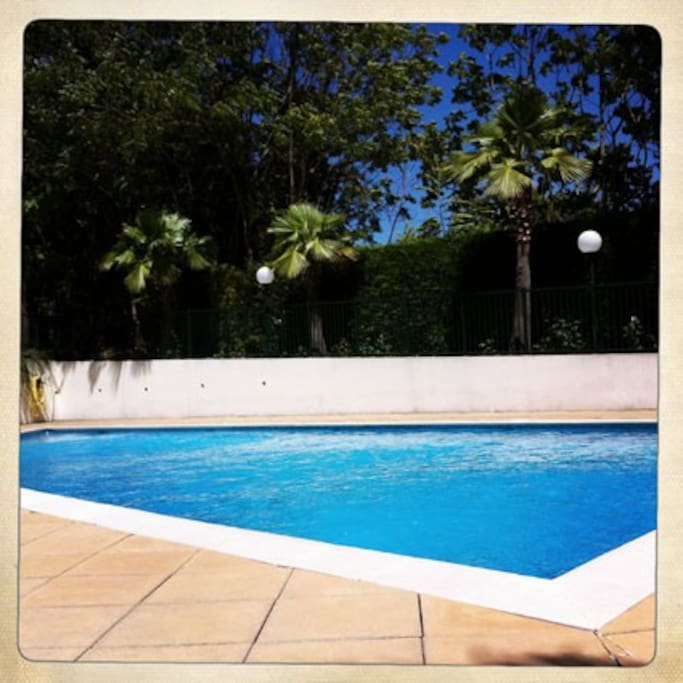Our swimming pool…