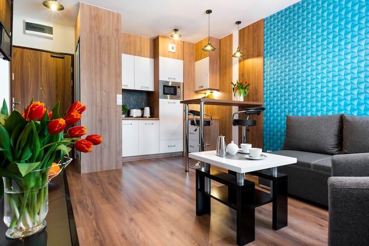 Modern studio apartment/Wroclawska