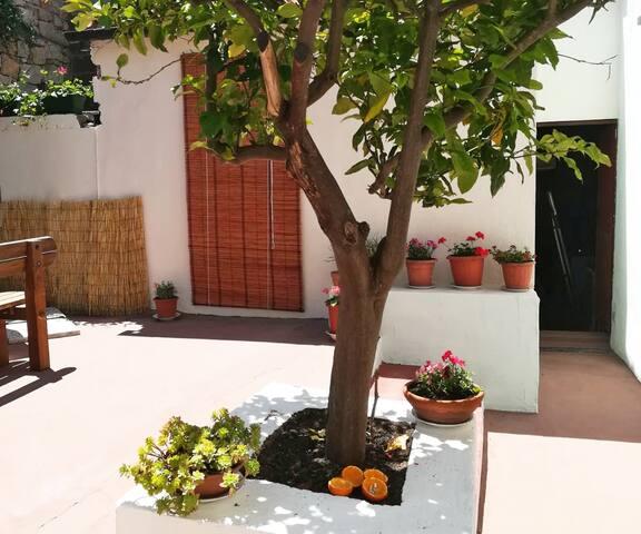 La pineta · Casa vacanze