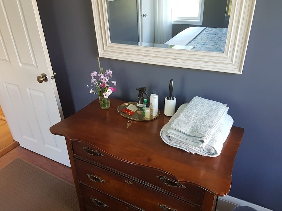 Amenities include towels, shampoo, conditioner, and shower gel.