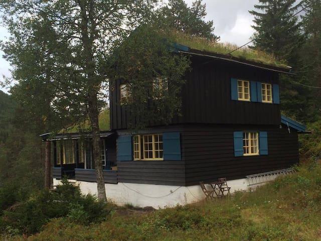 Flott hytte på Mjølfjell