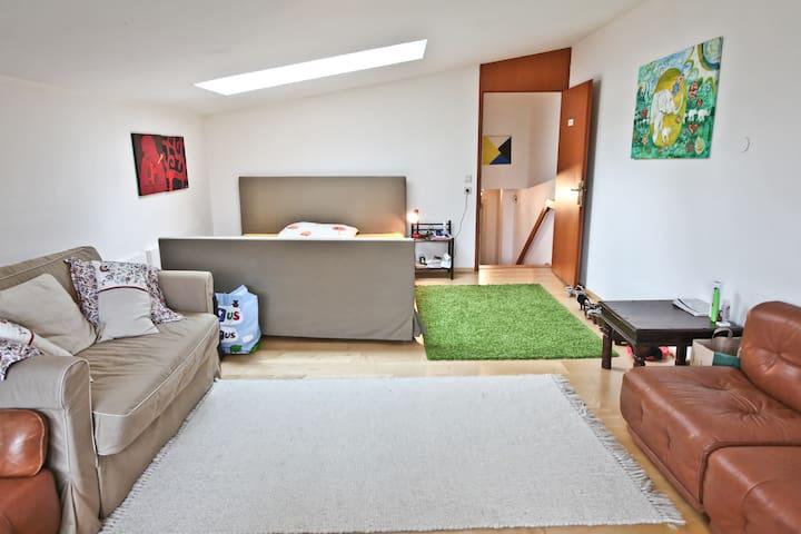 Chic Apartment in Salzburg-Villa
