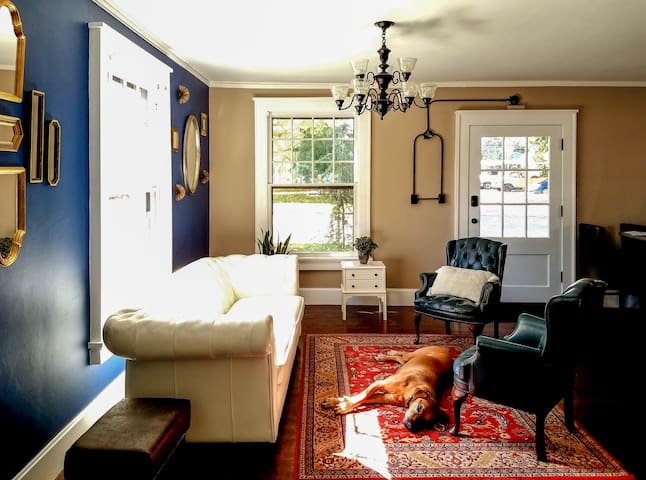 Living Room (Common Space)