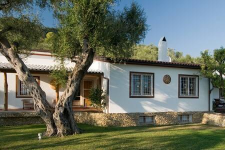 Villa Selvatonda - Pietrasanta - Vila