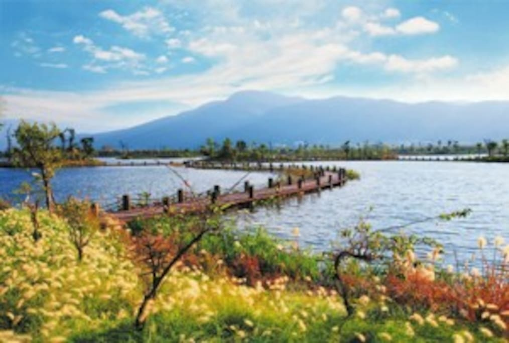 美丽的湿地公园,可免费提供早晚门票