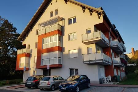 Luxury apartment Lazne Kynzvart