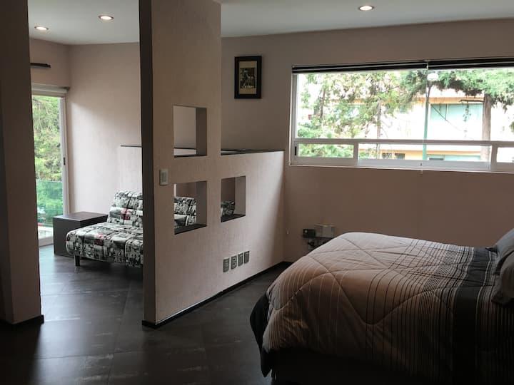 Habitación de lujo, amplia, con baño privado