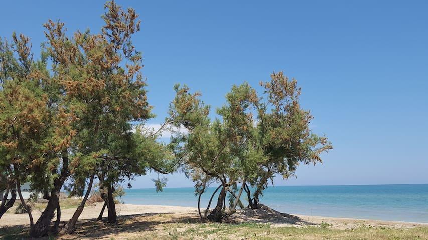 Appartamento a Pineto - mare, relax ed escursioni.