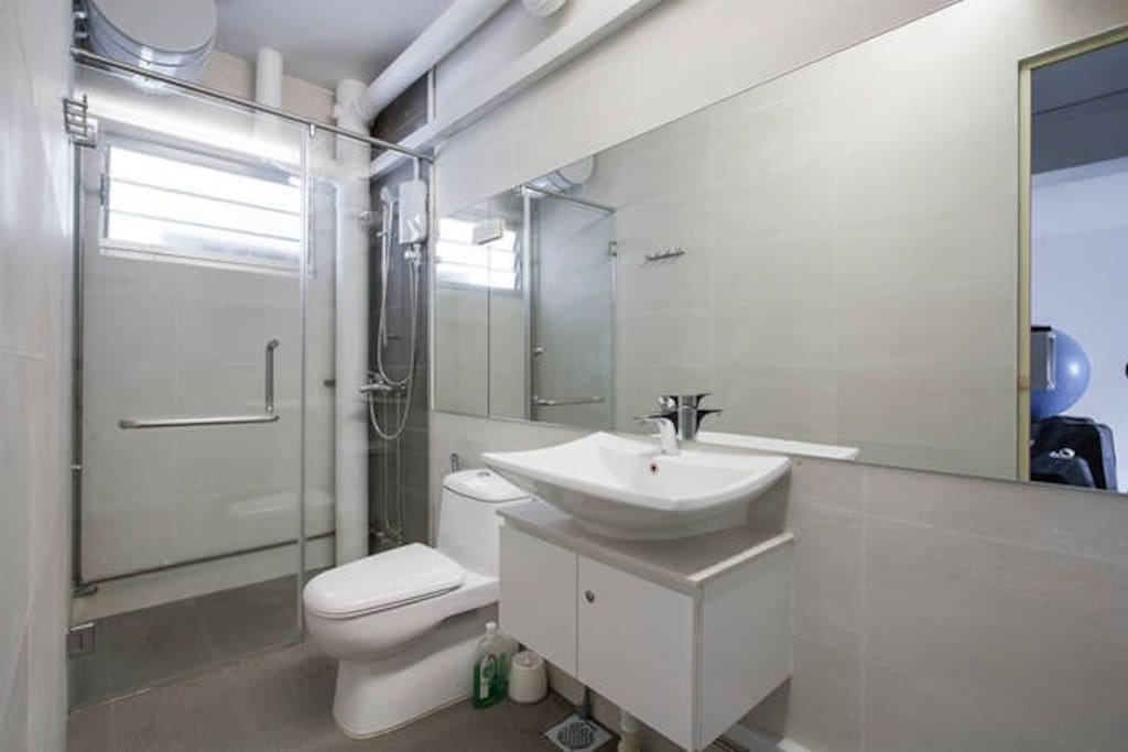 Hotel Like Washroom With Enclosed Shower Room
