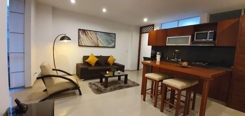 Apartamento-Suite en Hotel, Centenario, Granada