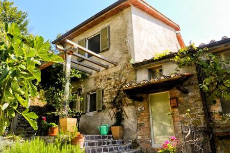 Tranquil Umbrian Hillside Getaway - San Leo Bastia - Casa