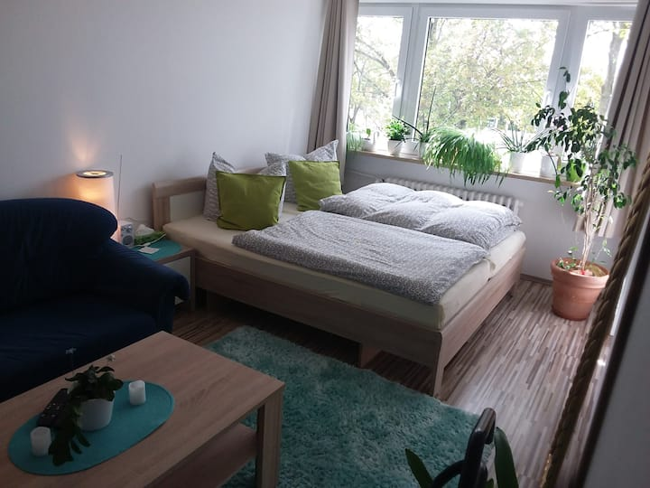 Großes, helles Zimmer in ruhiger Lage, altstadtnah