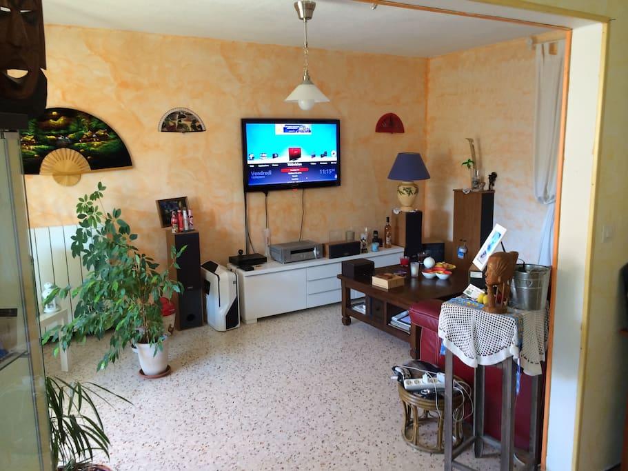 Grand salon avec TV écran plat et couchage
