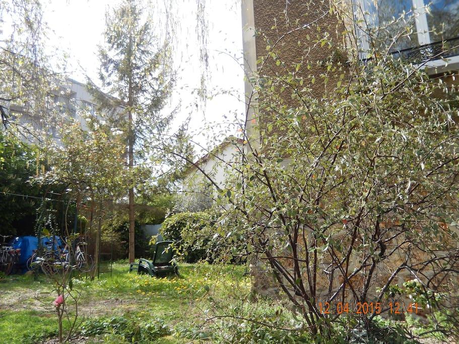 Le jardin sur l'arrière de la maison.