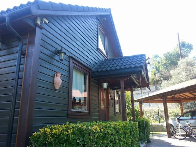 Amazing Wooden House, near Kakopetria
